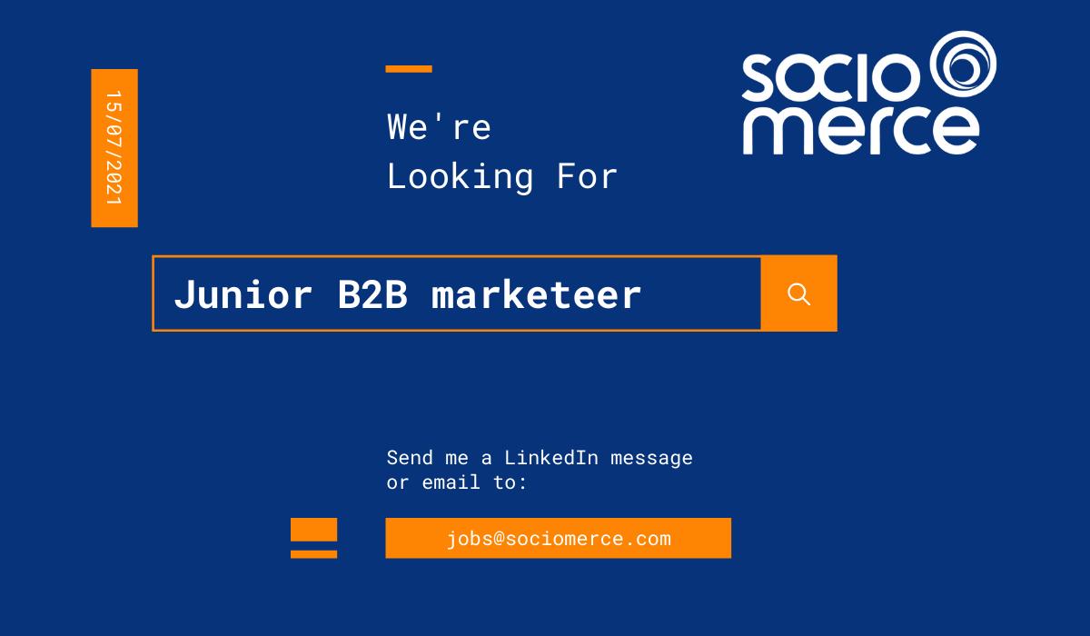 Junior B2B marketeer